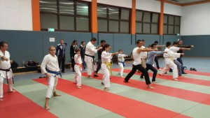 Karate Migrationsbeirat