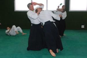 aikido_2016_SVKurs (1)